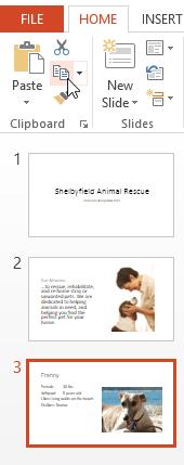 Screenshot of PowerPoint 2013