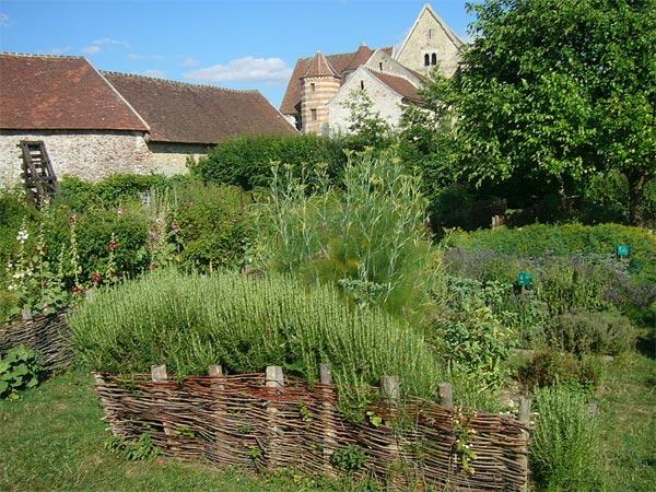 Jardin mdival  carr des simples hortus et plantes magiques