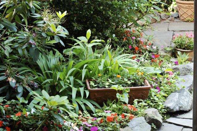 Amnagement D Un Petit Jardin De Ville Amazing Dans Un Petit Jardin Il Est Prfrable De Choisir