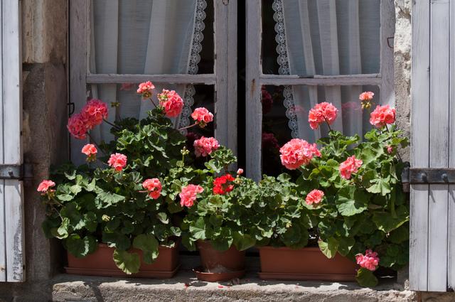 Dessous De Jardiniere Beautiful Clairage Extrieur Avec