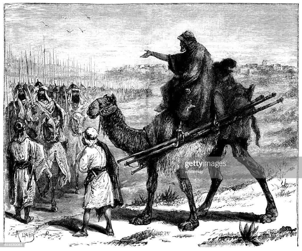 Army Camel