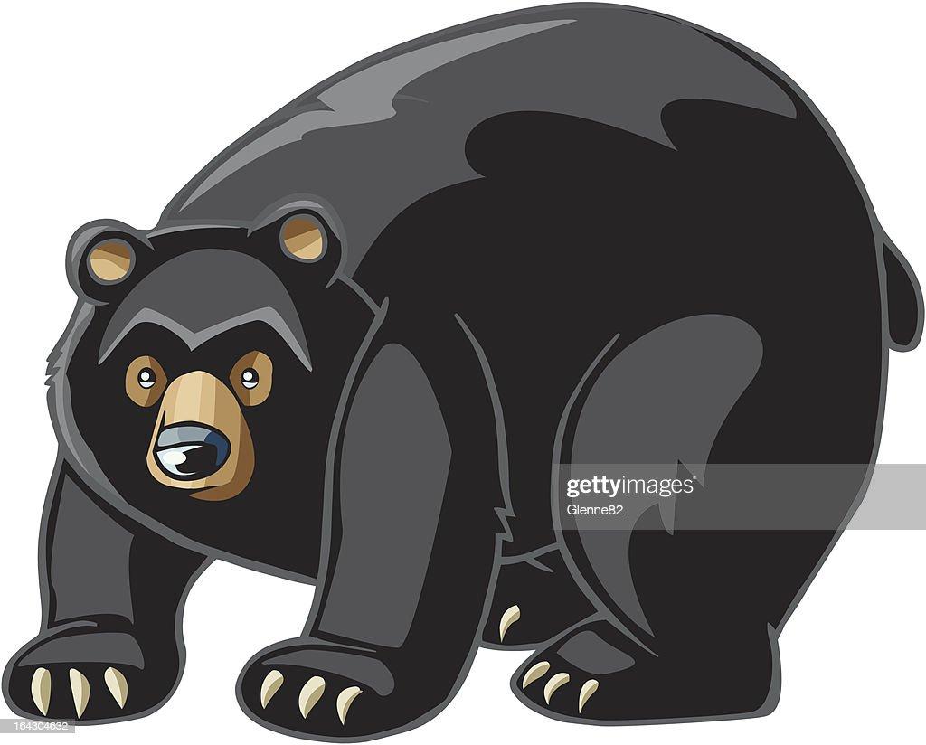 60 top black bear