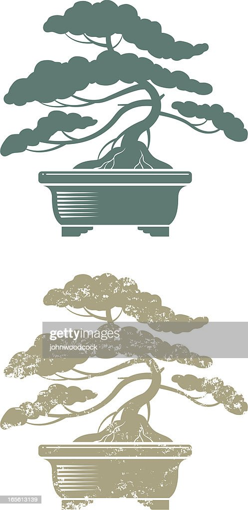 Bonsai Silhouette : bonsai, silhouette, Bonsai, Silhouette, High-Res, Vector, Graphic, Getty, Images