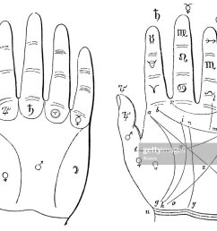 hand palm reading palmistry chiromancy diagram stock illustration [ 1024 x 768 Pixel ]