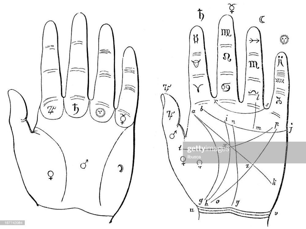 medium resolution of hand palm reading palmistry chiromancy diagram stock illustration