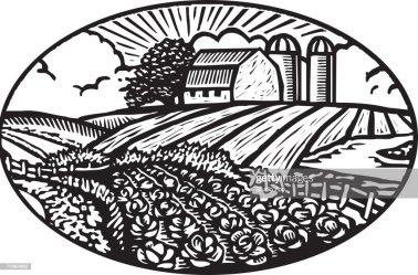 barn garden vegetable scene silo background oval vector illustration graphic illustrations