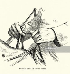 victorian diagram of holding double reins in both hands stock illustration [ 1024 x 819 Pixel ]
