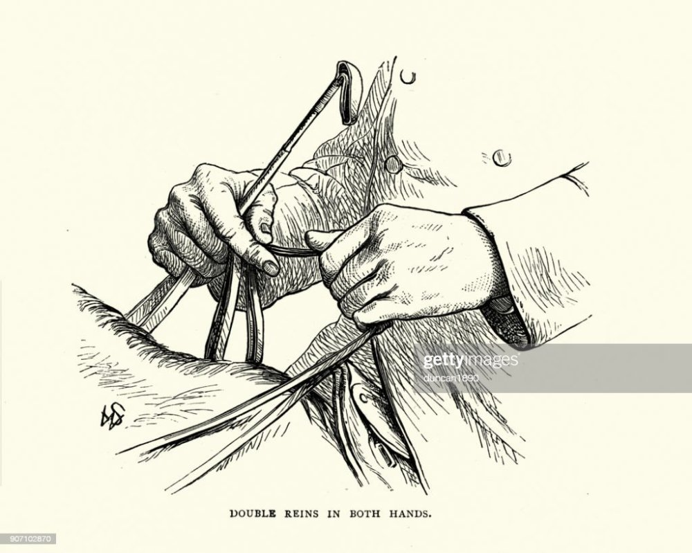 medium resolution of victorian diagram of holding double reins in both hands stock illustration