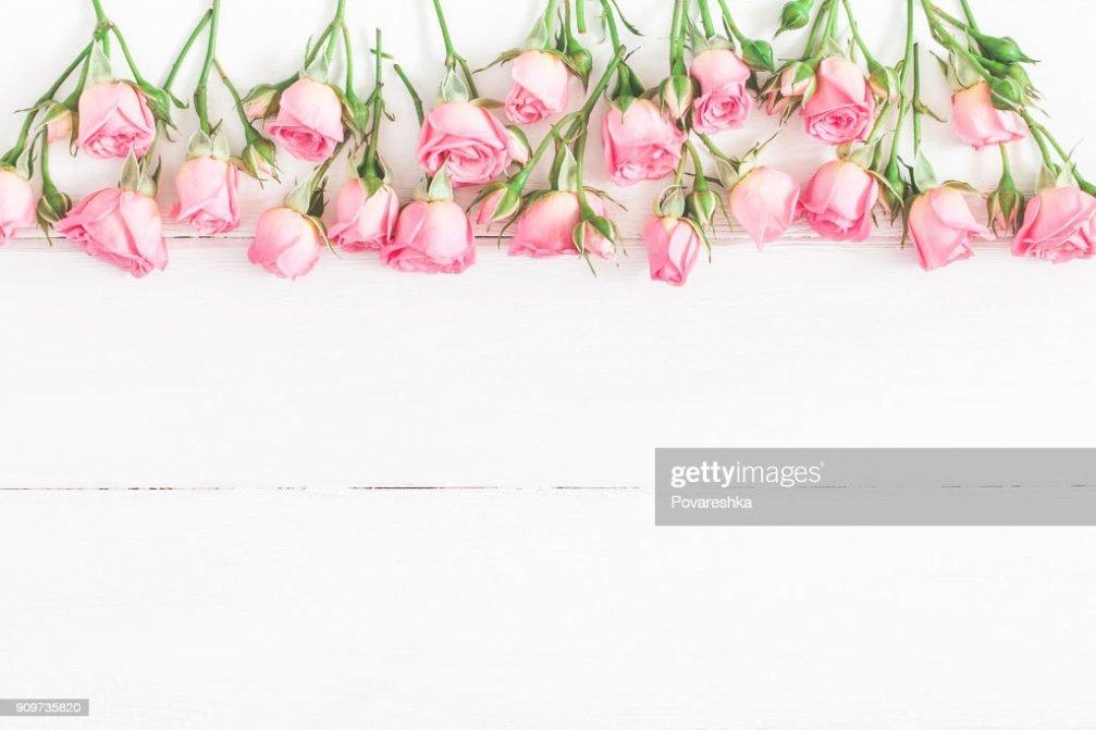 핑크 장미 꽃 테두리에 의하여 이루어져 있다 평면 위치 최고 보기 스톡 사진