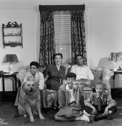 class middle american african portrait dog living 1945 happy families getty