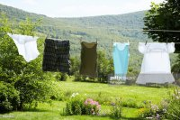 Clothesline In Rural Backyard Stock Photo