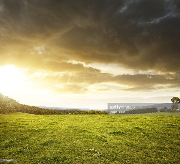 Country Landscape Stock Getty