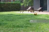 Empty Backyard Stock Photo | Getty Images