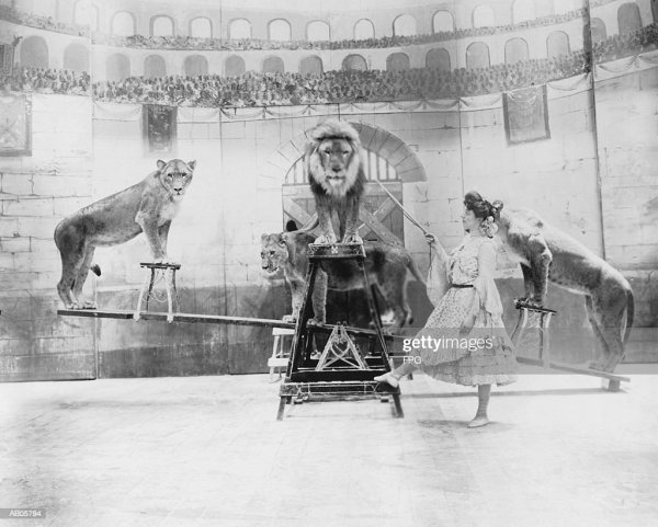 Female Lion Tamer Performing Stock Getty