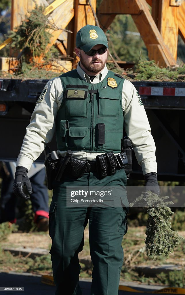 Forest service law enforcement & investigations is respponsible for the enforcement and investigation of violations to federals laws and regulations on. S Forest Service Law Enforcement Officer Claims A Small Cutting From News Photo Getty Images