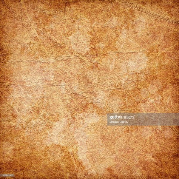 20+ Mottled Skin Texture Pictures and Ideas on Weric