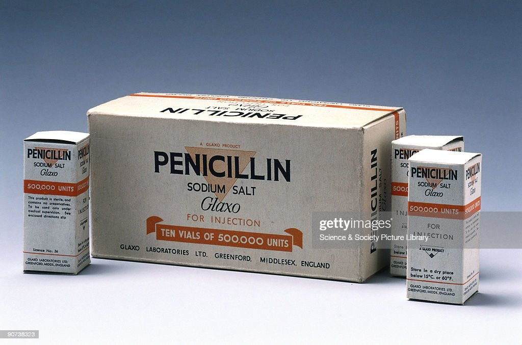 In 1928 Alexander Fleming discovered that the Penicillium mould... News Photo - Getty Images