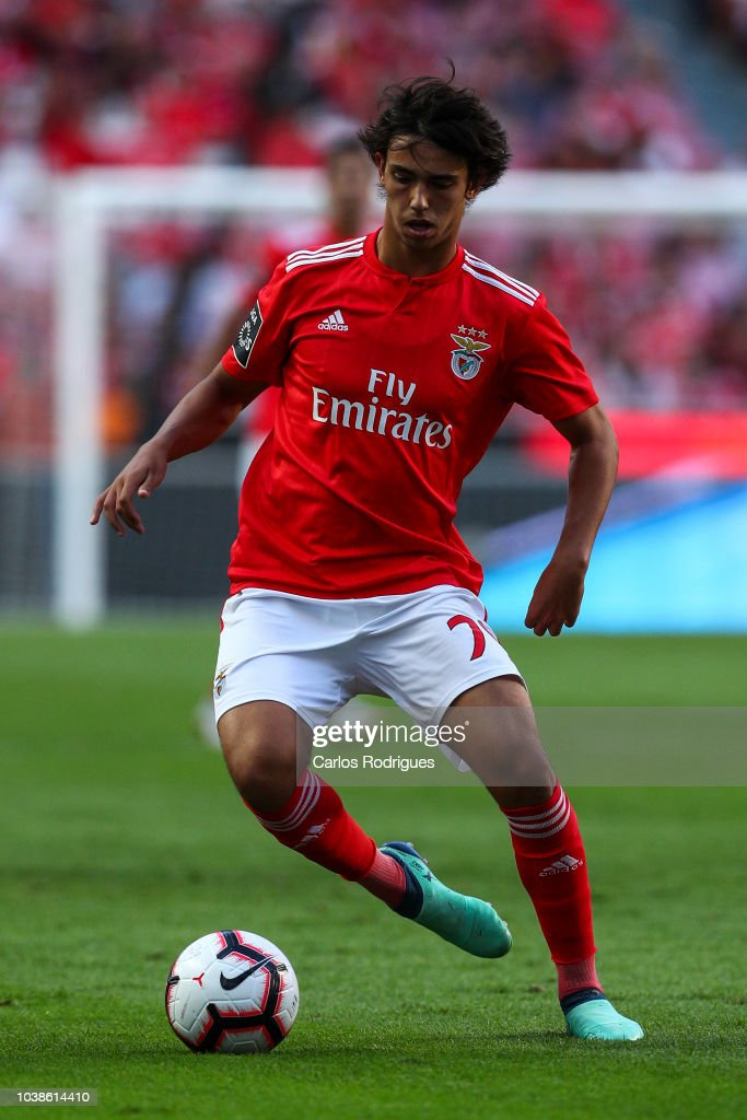 Joao Felix of SL Benfica during the Liga NOS match between SL Benfica... News Photo - Getty Images