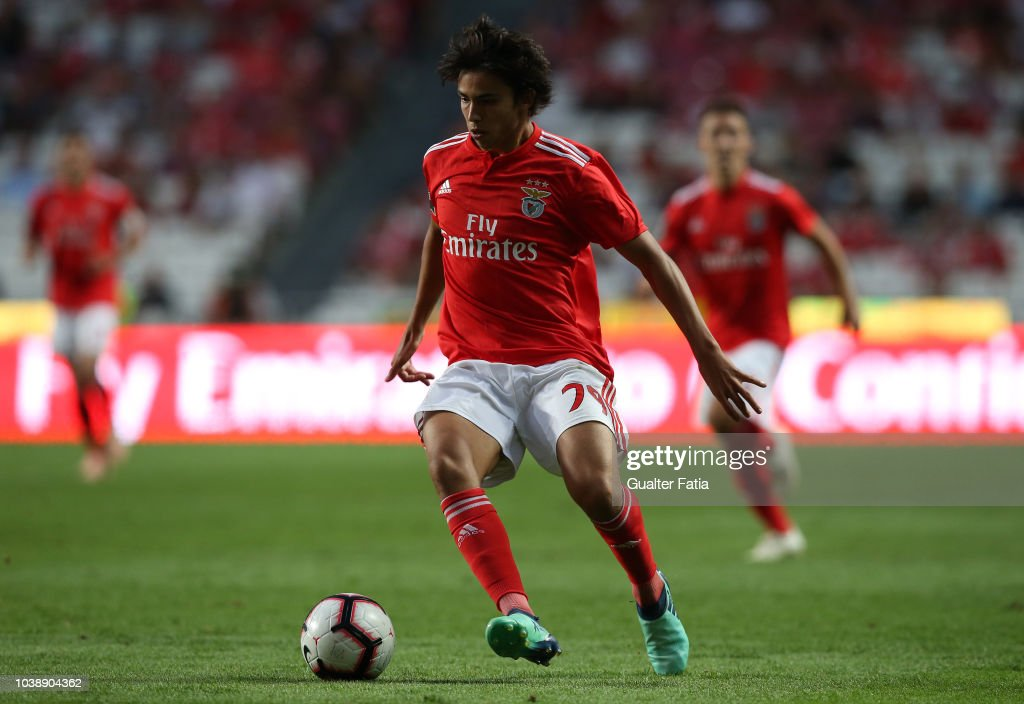 Joao Felix of SL Benfica in action during the Liga NOS match between... News Photo - Getty Images
