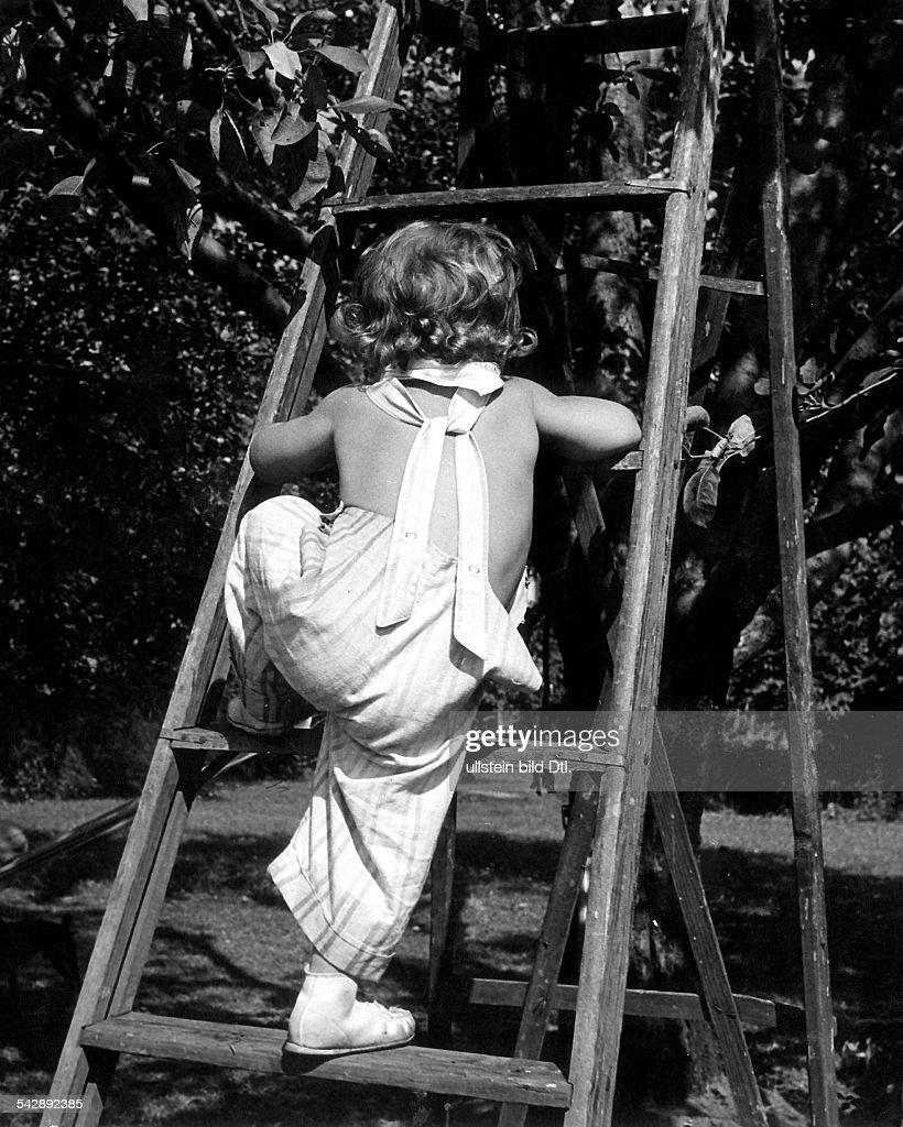 Kleines Mdchen klettert eine Leiter aneinem Apfelbaum hoch 1952 Photo dactualit  Getty Images