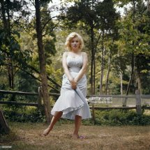 Marilyn Monroe Getty