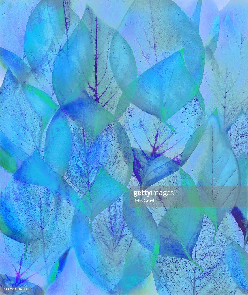 pattern of transparent green