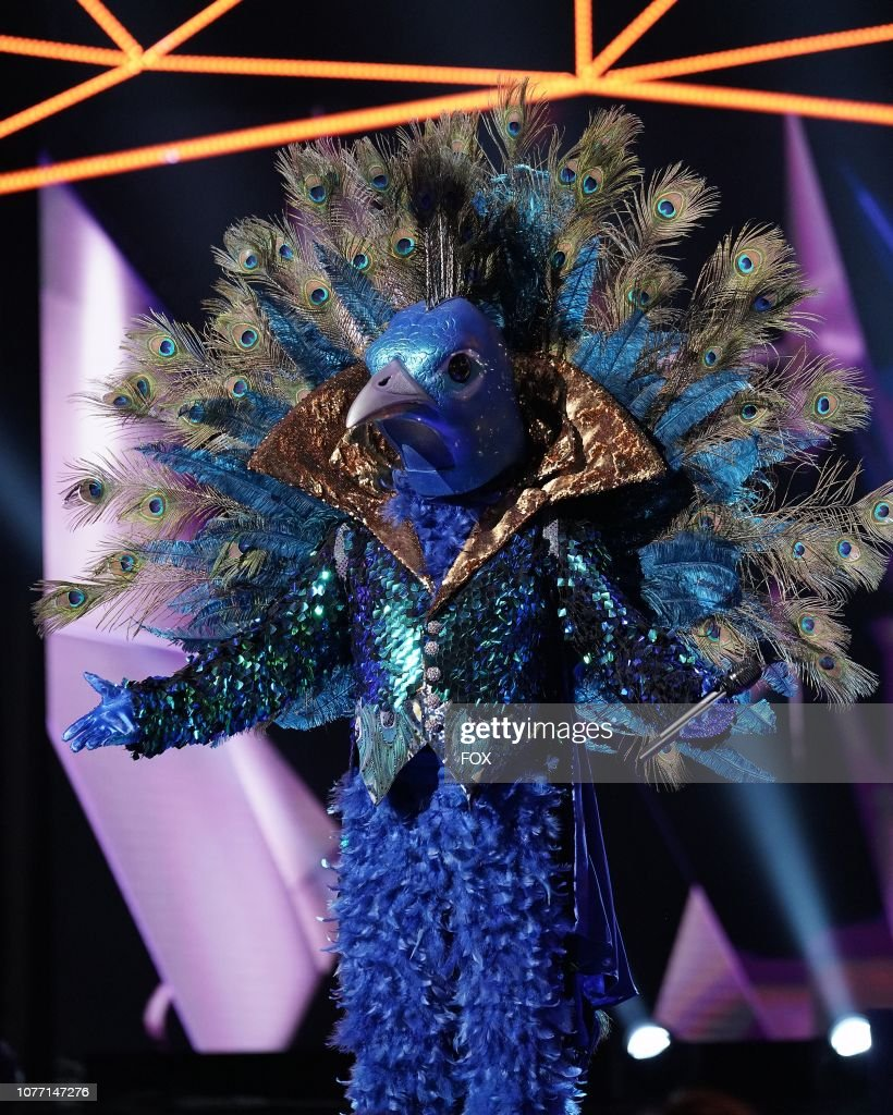 Le Paon Mask Singer : singer, Peacock, Photos, Premium, Pictures, Getty, Images