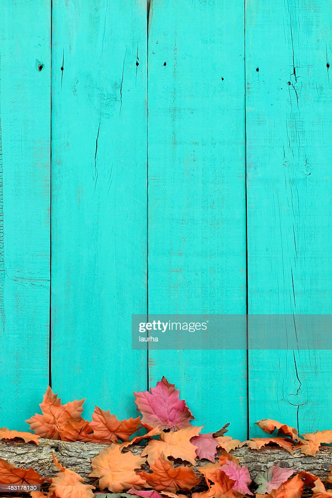 Fall Colored Background Wallpaper Rustic Sign With Fall Foliage Border Stock Photo Thinkstock