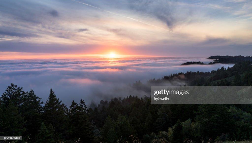 7:00am to sunset year round. 498 Mount Tamalpais Bilder Und Fotos Getty Images