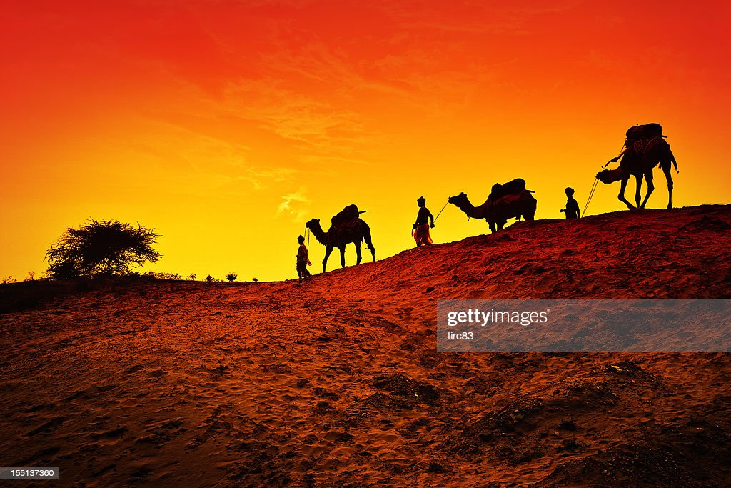 Image Stock Silhouette Wise Camel Men