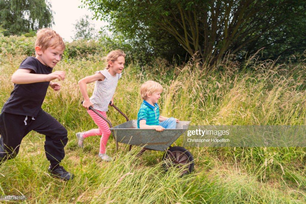 60 top wheelbarrow pictures