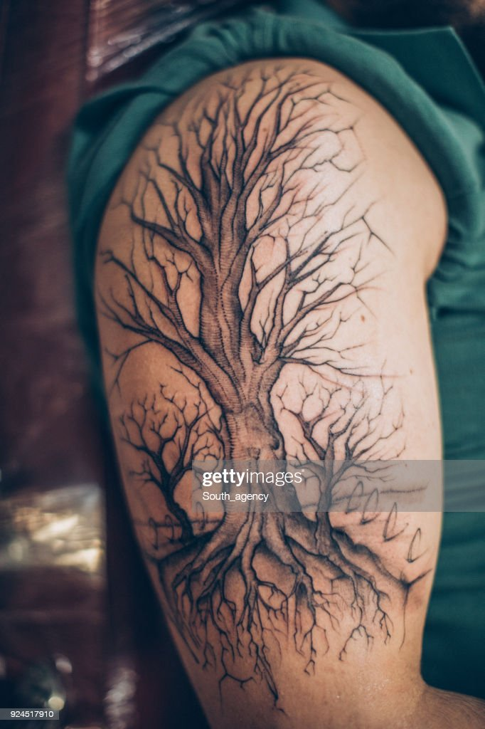 Tree Tattoo Arm : tattoo, Tattoo, Photos, Premium, Pictures, Getty, Images