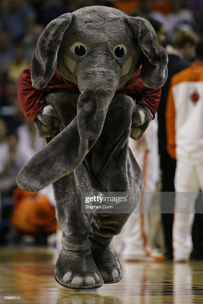 Alabama Crimson Tide Mascot Stock Photos And Pictures