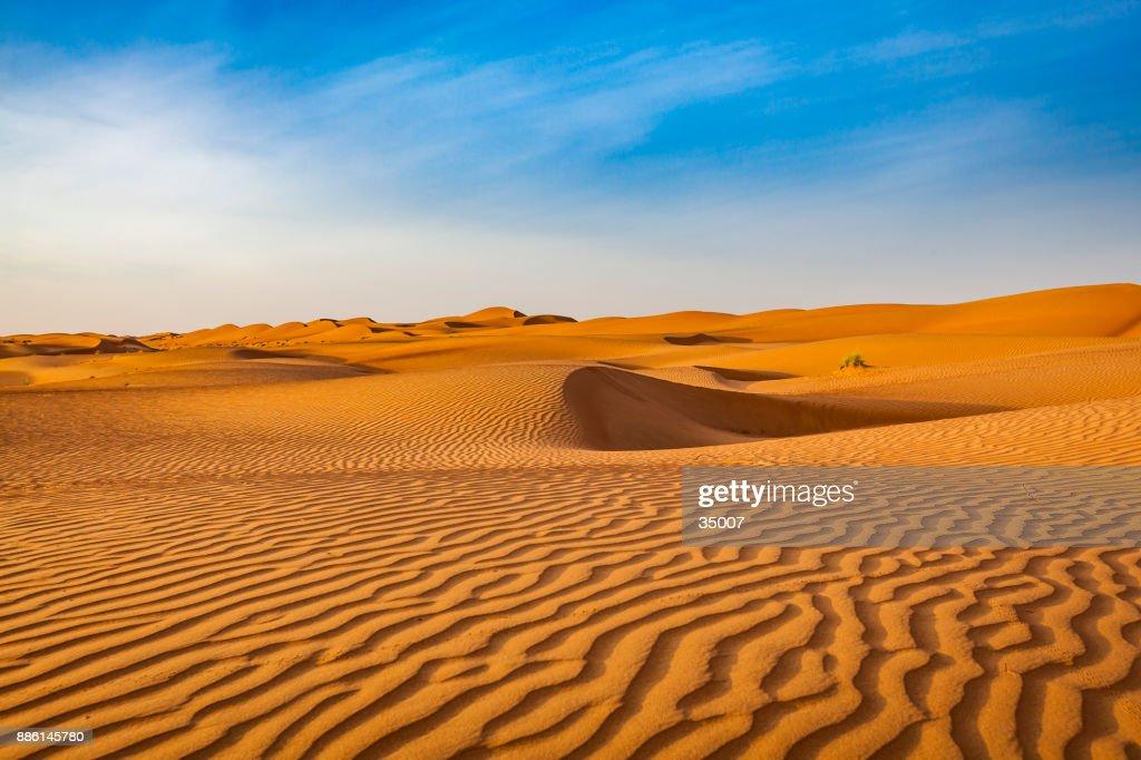 60 top desert pictures