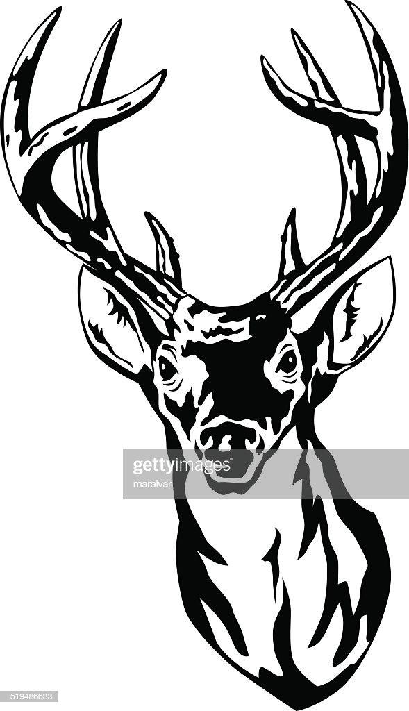 Deer Head Vector Art Getty Images