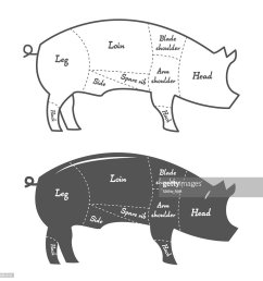 detailed illustration diagram scheme or chart of pork cuts vector art [ 1024 x 1024 Pixel ]