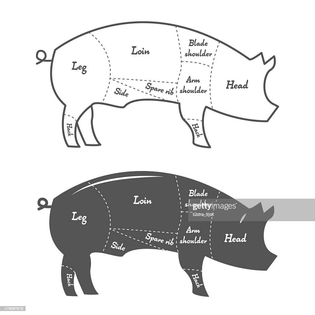 hight resolution of detailed illustration diagram scheme or chart of pork cuts vector art