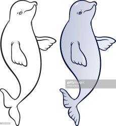 beluga whale cartoon smiling happy vector artist similar