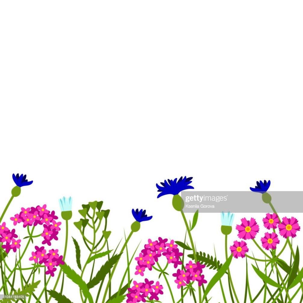 Clipart Fleurs Des Champs