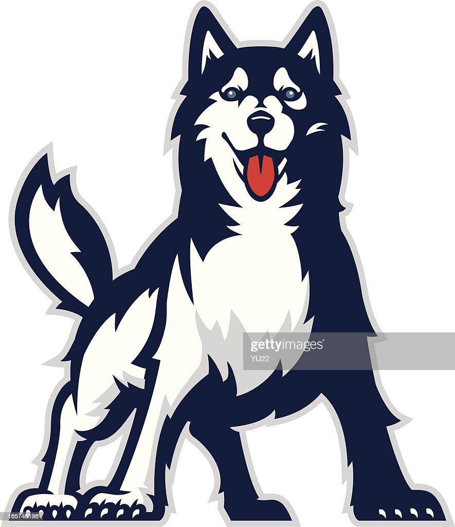 hight resolution of huskie mascot