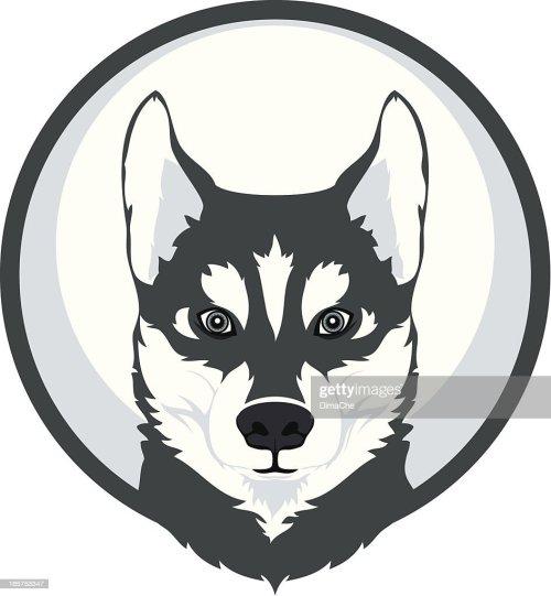 small resolution of husky mascot