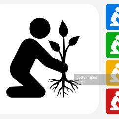 Shrub Graphic Symbols Diagram Whole House Fan Wiring Planting Tree Icon Flat Design Vector Art Getty