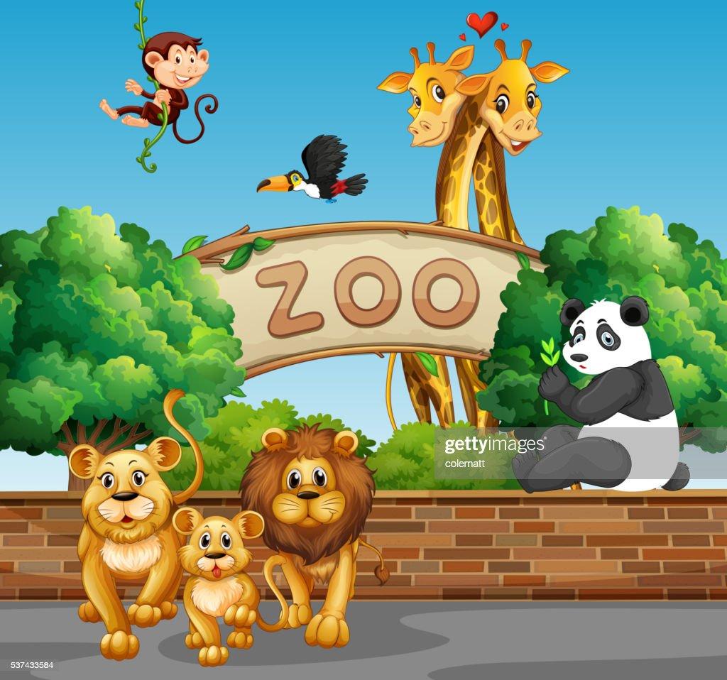 hight resolution of cadre avec des animaux sauvages au zoo clipart vectoriel