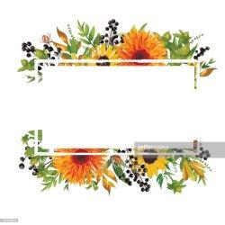 horizontal floral vector flower card orange sunflower gerbera daisy border garden autumn frame banner mix copy leaves invitation branches greeting