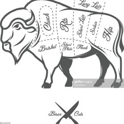 Vintage Diagram Solenoid Wiring Butcher Cuts Of Bison Buffalo Scheme Vector Art
