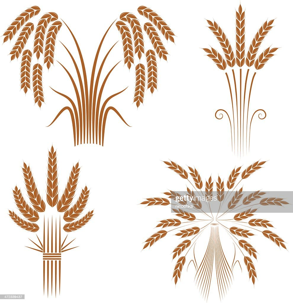 wheat sheaves stock illustration
