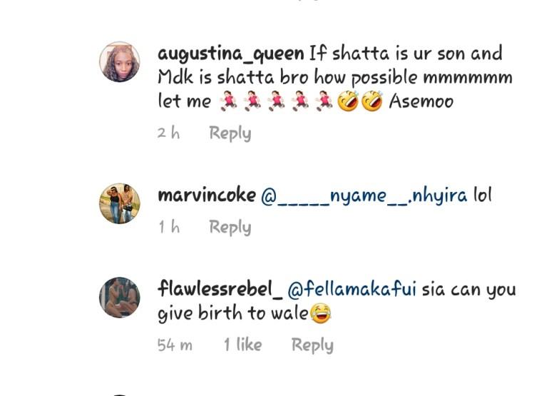 SM Fans Blasts Fella Makafui For Referring to Shatta Wale As His Son [SCREENSHOT] 2