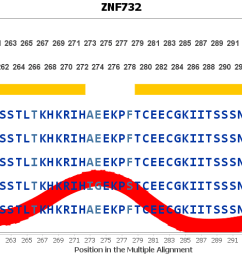 evolution for znf732 gene [ 9522 x 500 Pixel ]