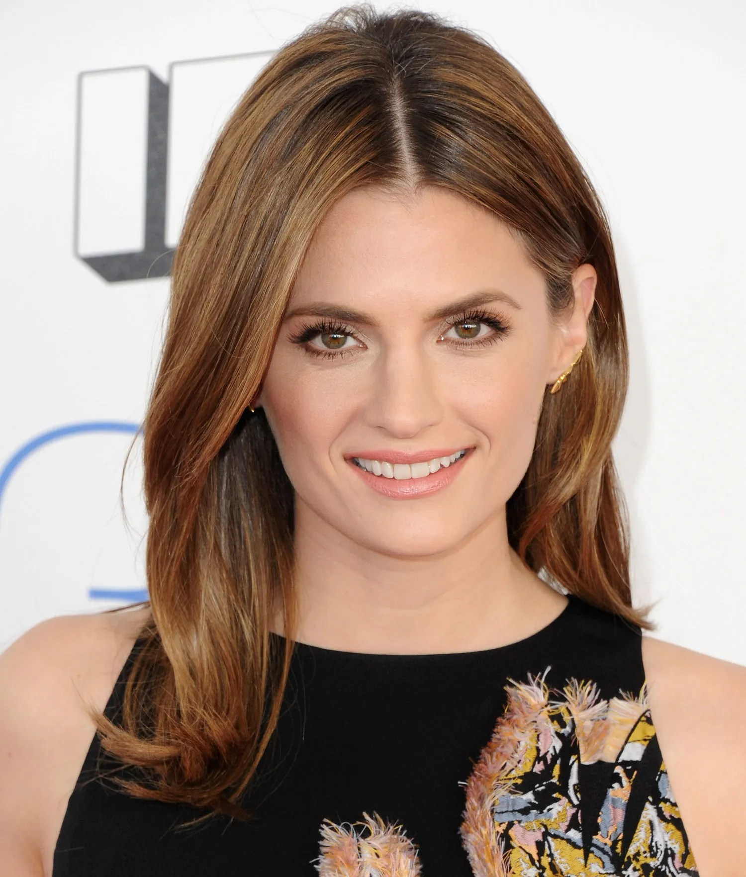Kate Beckett Hairstyles