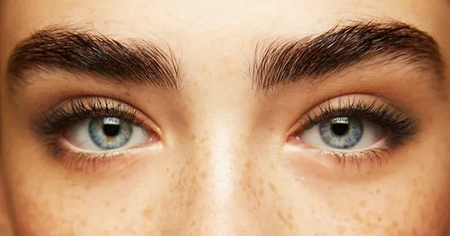 BROW GUIDE:  How to Fix Gaps and Holes 3